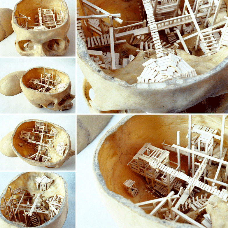 Nacre Crâne humain - Christophe Delestang