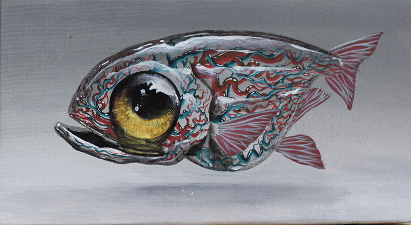 Anatomic Fishes 2 - Veks van Hillik